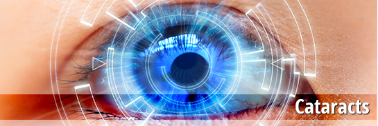 Ophthalmologists in Philadelphia | Kay, Tabas, Niknam